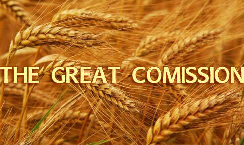 The Great Commission Series